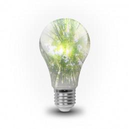 hållbar belysning